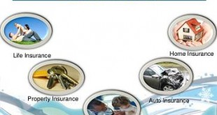 Various Types Of Insurances | different types of insurance