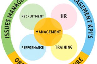Human Capital | expatriate employees