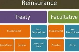Advantages And Disadvantages Of Facultative Reinsurance
