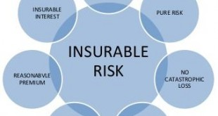 Examples Of Insurable Interest