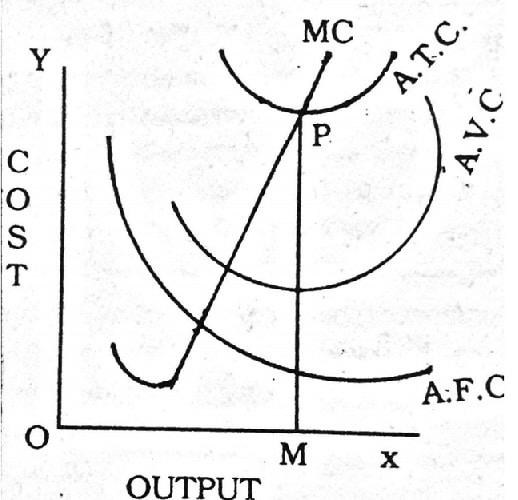 Diagrammatic Representation of Different costs