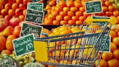 3 Fundamental Activities of Stores Department