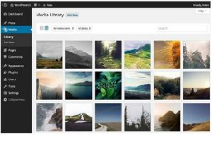 Photo of WordPress 4.0: what's new in it?