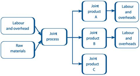 difference between joint cost and common cost