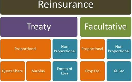 Advantages And Disadvantages Of Facultative Reinsurance